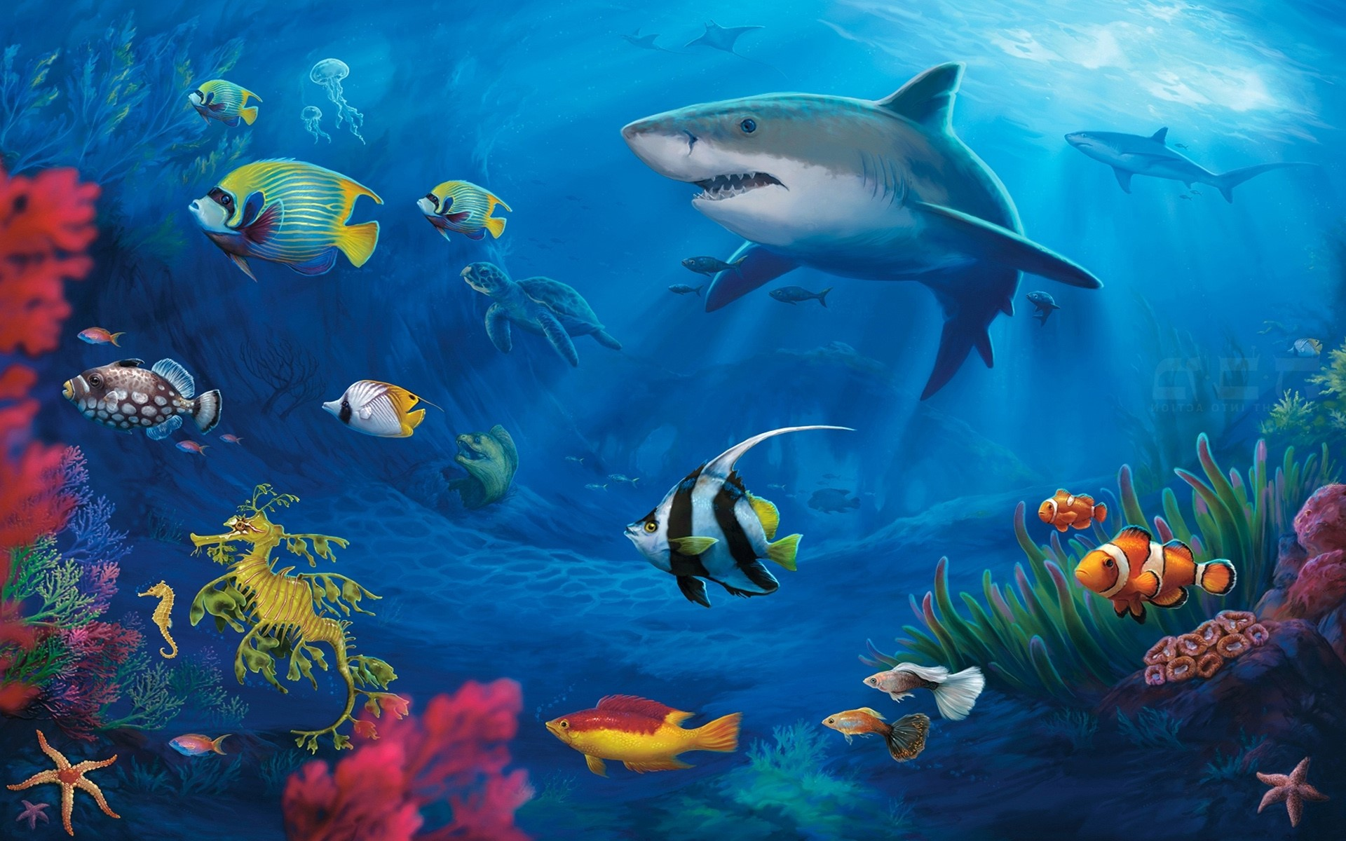 Free Tropical Fish Wallpapers